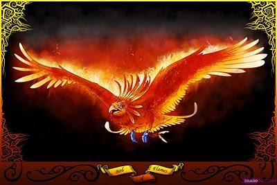 什麼是『不死鳥』?浴火重生是神話?還是能力圖改變的勇氣?